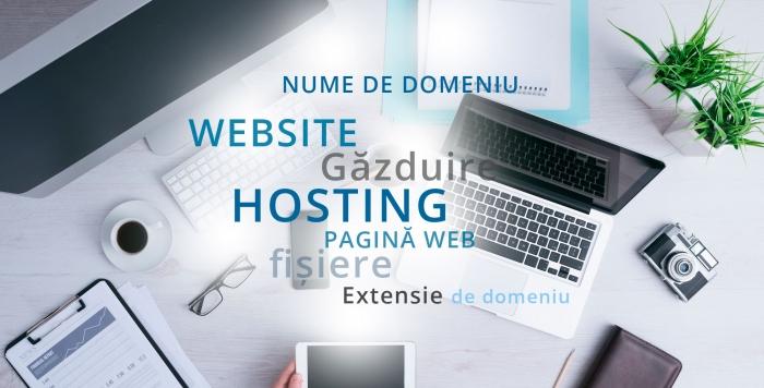 Ce diferente exista intre domeniu, hosting si website?